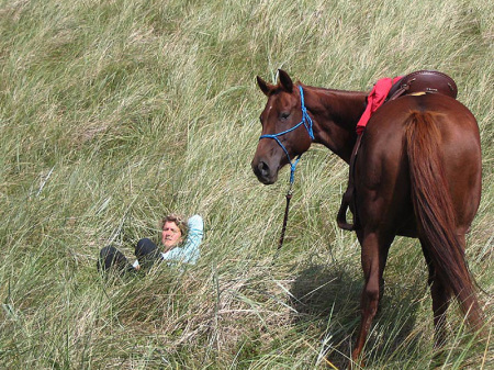 Erholen und Entspannen mit Pferden